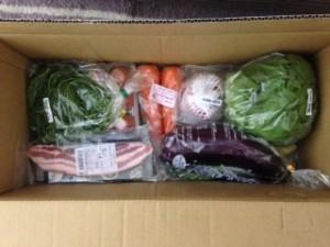 Oisix(オイシックス)野菜